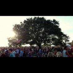 ACL 2011
