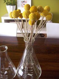 Craspedia in a vase