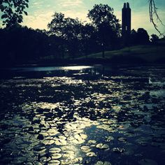 Potter Lake.