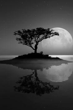 Serenity..https://www.facebook.com/pages/Macson-Torrelodones/581067705250305?ref=hl