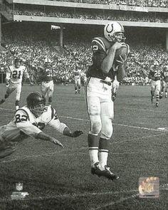 46c12000e Raymond Berry (Pink) 1960 Action Photo Print (20 x 24) School Football