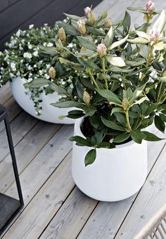 Outdoor flower pots