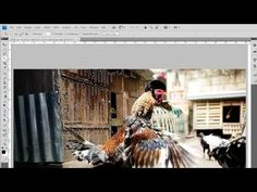 Photoshop CS4 Tutorial - First six tools overview (beginner) - YouTube