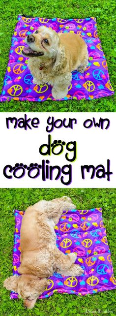 DIY Dog Cooling Pad Sewing Tutorial - Need to keep your dog cooled off in hot weather? Here is a DIY Dog Cooling Mat Tutorial that will keep your pooch cool while he's outside with the family. It's great pet bed for warm weather climates. It's easy to mak Dog Crafts, Animal Crafts, Chien Mira, Diy Pour Chien, Dog Cooling Mat, Diy Pet, Diy Dog Bed, Wallpaper English, Golden Retriever