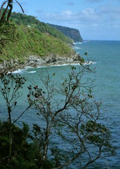 """Coastline: Dominica has been nicknamed the """"Nature Isle of the Caribbean"""" due to its seemingly unspoiled natural beauty."""