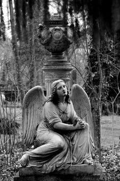 Now I've learned that friedhof is the German for cemetery. Cemetery Angels, Cemetery Statues, Cemetery Headstones, Old Cemeteries, Cemetery Art, Graveyards, Cemetery Monuments, Angels Among Us, Angels And Demons