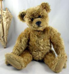 "13"" Steiff circa 1906 Teddy Pictures, Doll Toys, Dolls, Antique Teddy Bears, Love Bears All Things, Charlie Bears, Cute Teddy Bears, Bear Doll, Illustrations"