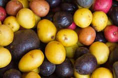 Try growing one of these colorful potato varieties.