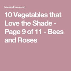 10 Vegetables that Love the Shade - Page 9 of 11 - Bees and Roses Plants That Love Shade, Shade Plants, Gardening For Dummies, Gardening Tips, Garden Shrubs, Shade Garden, Easy Vegetables To Grow, Powdery Mildew, That's Love
