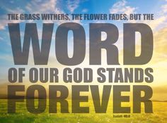 The Grass Withers, The Flower Fades, But The Word of Our God Stands FOREVER. ~ Isaiah 40:8 ❤️🔥✡️✝️✡️🔥❤️ #God #wow #Beautiful #bible #Truth#Israel #strength #amazing #true #faith #love #ChildofGod #Quotes #Life#Inspiration #Spiritual #Business #Entrepreneur #Success #Soul#Motivation #islam #Spirituality #Jesus #HolySpirit #BornAgain #Saved#Christian #Salvation #AreYouSaved