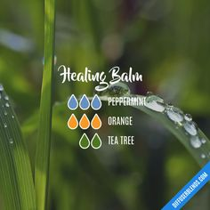 Healing Balm - Essential Oil Diffuser Blend