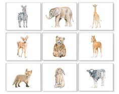 Safari Nursery Art Nursery Prints Baby Animal by JamesRiverStudios