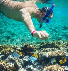 If you're not quite sure where to snorkel in Grand Cayman, we've made it easy. Here are some of the top spots.  2016