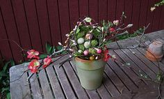 Nest on apple tree branches Easter by ForestnShoreNaturals on Etsy, $39.00