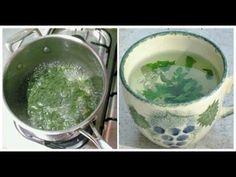 Esta planta es milagrosa; Mujer era de 72 Kg y en 3 dias bajo 67 Kg, Sorprendente!! - YouTube