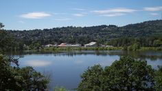 Oaks Bottom is a protected area encompassed by the Sellwood Moreland neighborhood to the east and the Willamette River to the west.