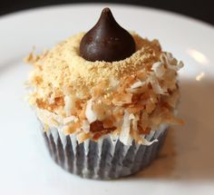chocolate cupcake, marshmallow frosting, toasted coconut and graham cracker topping