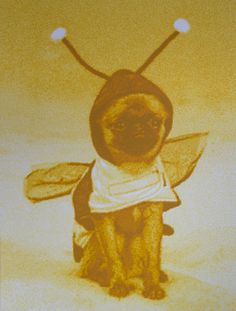 Esteban Pena-Parga, Bumblebee, from: things are like their owners on ArtStack #esteban-pena-parga #art