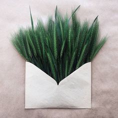 Flowers Bouquets in Vintage Envelopes – Fubiz Media Easy Flower Crafts That Anyone Can Do Arts and c My Flower, Flower Art, Flower Power, Green Flowers, Beautiful Flowers, Beautiful Smile, Floral Letters, Flower Decorations, Planting Flowers
