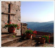Vellano Village, Roof-tops and Church.  Pescia, Pistoia, Tuscany
