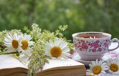 Η Κορυφαία Σπιτική Συσφικτική Μάσκα Ανόρθωσης Περιγράμματος Για Ώριμες Επιδερμίδες.   Μυστικά ομορφιάς   mystikaomorfias.gr Tea For Migraines, Teas For Headaches, Cluster Headaches, Effects Of Ginger, Effects Of Green Tea, Best Herbal Tea, Best Tea, Health Benefits Of Ginger, Head Pain