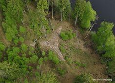 Stjärngraven vid Vasasjön Foto: Bertil Hagberg