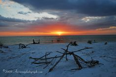 "Heading here in a few short weeks!!!..Fort Desoto beach in Florida | Fort DeSoto Park - America's Top Beach 2008, ""The Portrait of ..."