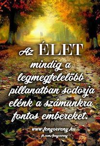 Teremtő képzelet/Vizualizáció: Földhöz rögzítés és az energia áramoltatás - Fényörvény.hu Bff Quotes, Qoutes, Motivational Quotes, Inspirational Quotes, Positive Thoughts, Picture Quotes, Self, Wisdom, Words