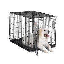 "iCrate Single-Door Dog Crate Size: X-Large - 48"" L x 30"" W x 33"" H"