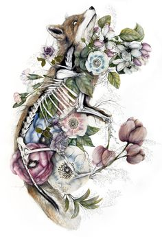 Bologna-based Italian artist Nunzio Paci (previously here and here) produces hauntingly detailed paintings that combine anatomical renderings with multi-colored blossoms and leaves. His latest series, Mimesis, is inspired by the idea of species evolving t Arte Com Grey's Anatomy, Anatomy Art, Nunzio Paci, Art Fox, Art Et Nature, Flora Und Fauna, Detailed Paintings, Drawn Art, Colossal Art