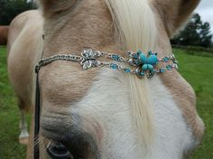 Be so cute on Pistol💖 Turquoise Butterfly Browband
