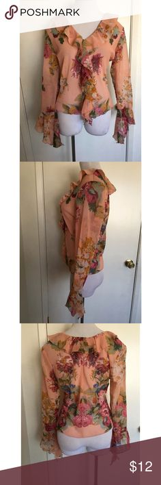 Sheer Floral Ruffled Collar Blouse Medium Previously Owned. In Good Condition. Size: Medium. Material: 100% Polyester She's Cool Tops Blouses