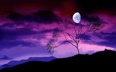 Purple Landscape with silhouette and moon