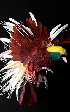 The Unbelievable Beauty Of Papercraft Plumage: A Colombian artist Diana Beltran Herrera has re-created hundreds of birds out of paper in exquisite detail, feather by feather.