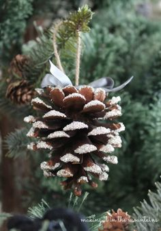 This blogger used Modge Podge and German Glass Glitter to make her pinecone look like it just came inside from a snowy day. See more at Making It In the Mountains »