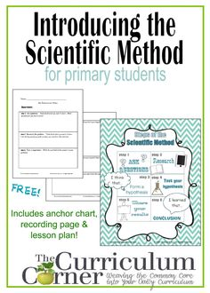 the scientific method comprehension 3rd grade reading