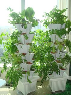 We bring the benefits of hydroponic vertical container gardening to everyone, with complete kits that are simple to use. These EzGro vertical garden kits let Hydroponic Farming, Hydroponic Growing, Aquaponics Kit, Container Plants, Container Gardening, Indoor Gardening, Vertikal Garden, Beautiful Flowers Garden, Backyard Landscaping