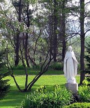 What is a Mary Garden? Wikipedia article that tells about the tradition of a Mary Garden and discusses the plants used to create one. A Mary Garden is a small sacred garden enclosing a statute or shrine of the Virgin Mary, who is known to many Christians as the Blessed Virgin, Our Lady, or the Mother of God.