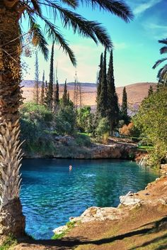 Suzy Grange - Google+ - Gan Hashlosa Thermal lake in Northern Israel