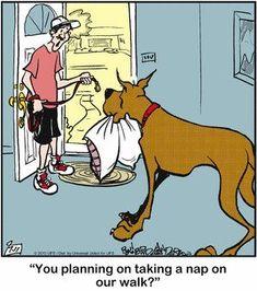 It'll be a funny walk)) my dog exactly Funny Dog Jokes, Funny Cartoons, Funny Dogs, Pet Dogs, Dog Cat, Doggies, Funny Walk, Dog Comics, Dane Dog