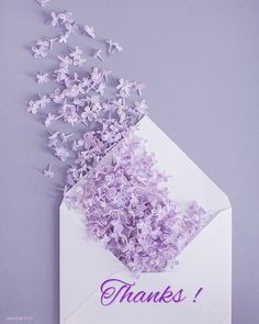 Lavender Aesthetic, Purple Aesthetic, Flower Phone Wallpaper, Purple Wallpaper, Art Floral, Cute Wallpapers, Wallpaper Backgrounds, Wedding Fotos, Lilac Wedding