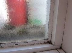 Condensation causes black mould or mildew around window frames and recesses Window Condensation, Water Condensation, Window Frames, Frames On Wall, Mold On Window Sills, Molding Around Windows, Remove Black Mold, Dryer Vent Hose, Diy Doctor