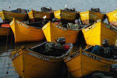 Yellow boats.
