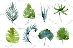 watercolor tropical leaves, patterns by Olesya Morokhovets on @creativemarket
