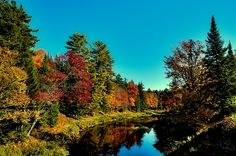 #Adirondacks - Autumn Splendor on the Moose River - Old Forge, New York