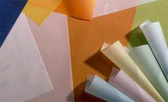What is Vellum (vel'-uhm) Paper?