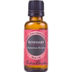 Top 7 Uses for Rosemary Essential Oil