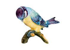 Pássaros - Titmouse