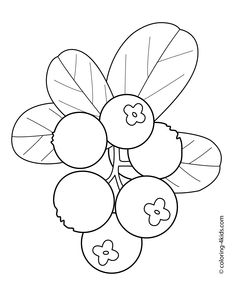 Cowberry fruits and berries coloring pages for kids, printable free