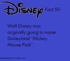 Good choice Walt, good choice